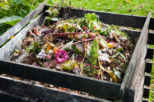 How to Start a Compost Pile in 4 Easy Steps