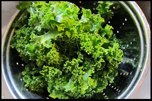 Kale Salad with Lemon Dressing | Maria's Farm Country Kitchen