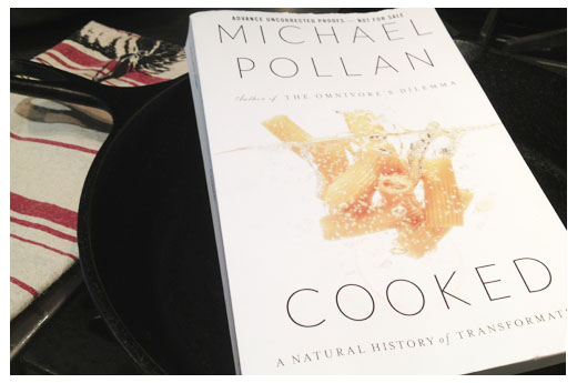 Michael Pollan's Cooked: A Review