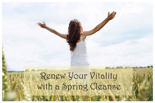 Renew Your Vitality with a Spring Cleanse