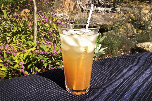 Spiced Apple Cider Spritzer