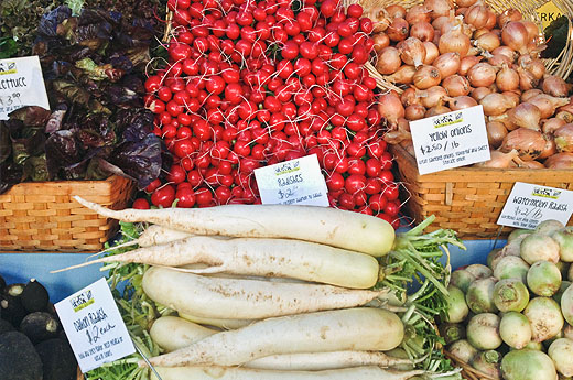 The Oldest Continuous Farmers' Market in America