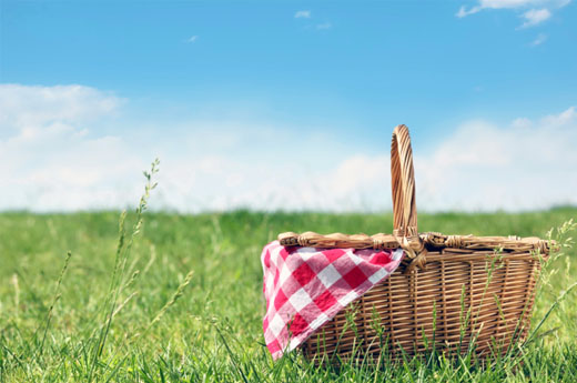 Maria's Five Favorites: It's Picnic Time!