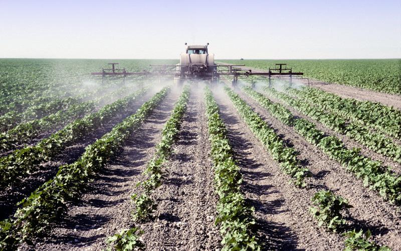 GMO_Pesticides