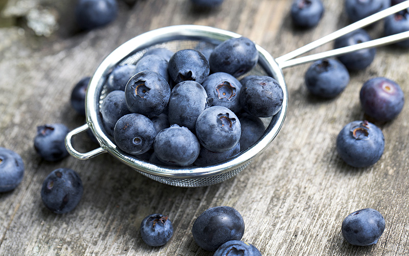 blueberries_brainfood