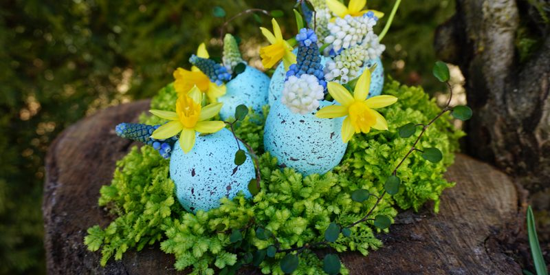 Easter Craft: Eggshell Vases