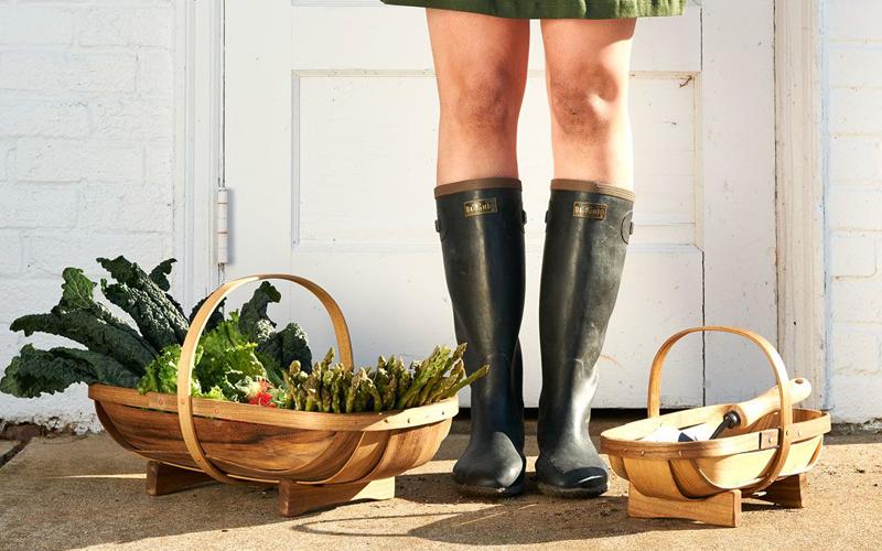 Gardening Rodale's