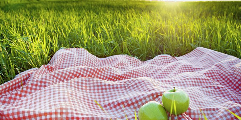 Maria's Five Favorites: It's Picnic Time Again!