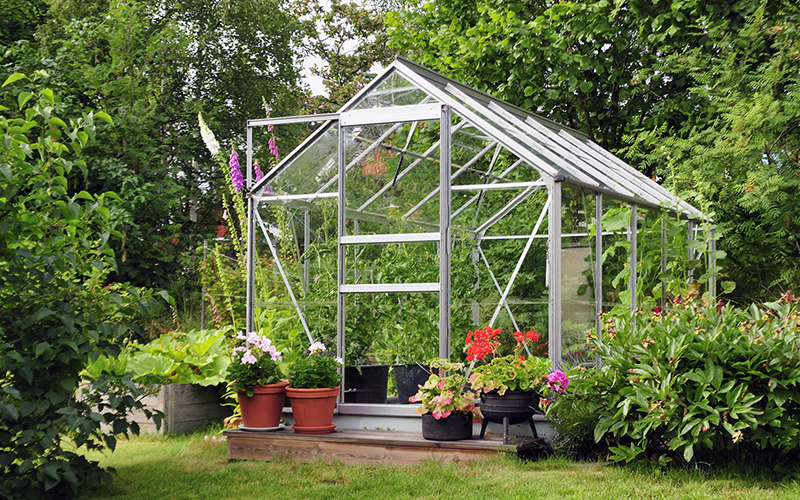 How to Care for a Greenhouse