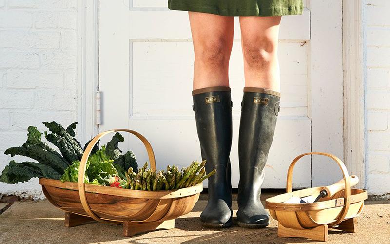 garden fever - Garden Fever