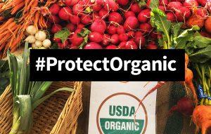 13752_protect_organic_1000x636-1
